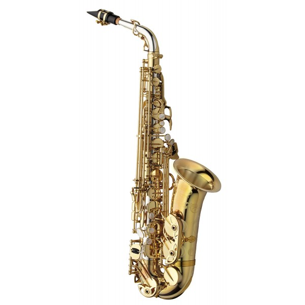 Alto Sax - Solid Silver Body & Neck - Brass Bell & Bow
