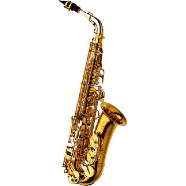Alto Sax - Solid Silver N,B - Brass Bell & Bow